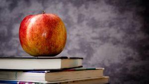 """La """"Buona Scuola"""": la MAD funziona anche con la Riforma"""