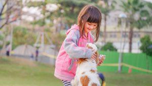 La Pet Therapy a scuola: applicazioni e benefici
