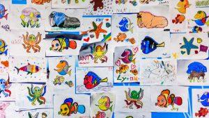 Immissioni in ruolo infanzia primaria e graduatorie concorso straordinario